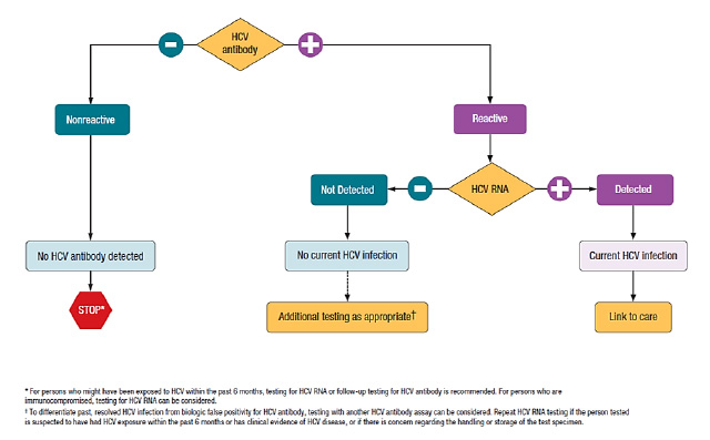 HepC-flow-chart