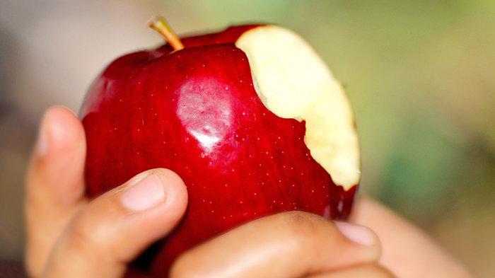 apple_wide-0c7334d0e65afbc5c837c0d15822a65f9f8fec34-s700-c85